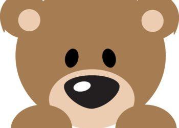 bear-clipart-baby-shower-469250-4600442